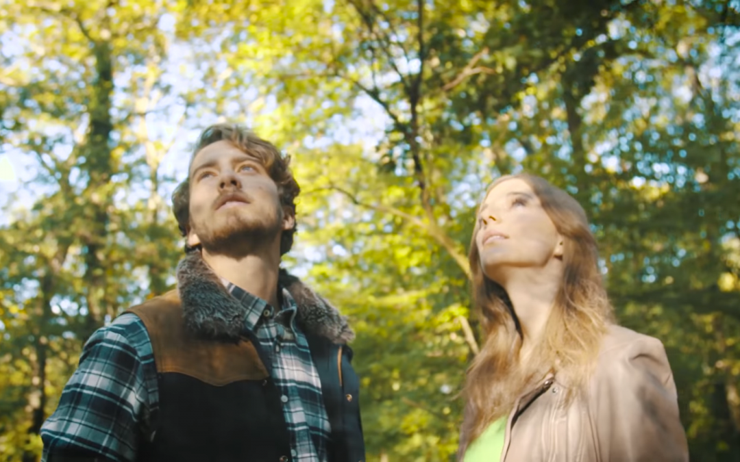 Zur Entspannung & Inspiration: Den Wald mit allen Sinnen und ganz ohne Anleitung genießen